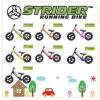 STRIDER-product