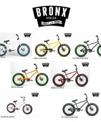 bronx20